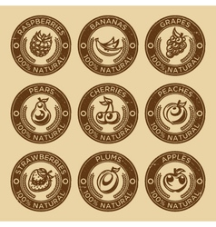 Natural fruits and berry stamps vector