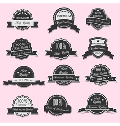 12 premium quality labels vector