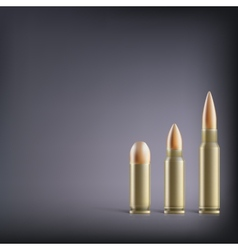 Rifle bullets vector