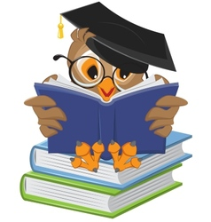 Wise owl reading book vector
