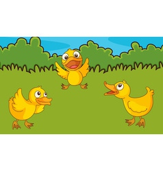 Chicks in a field vector