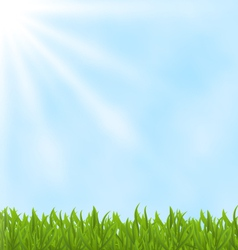 Summer background with green field and sky vector