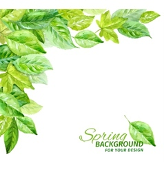 Spring leaves watercolor angular vector