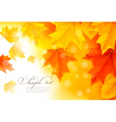 Autumn background with gold and red leaves vector