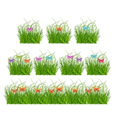Collection grass and butterflies vector