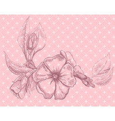 Retro floral card with beautiful flower vector