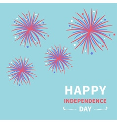 Fireworks on blue sky independence day vector