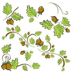 Acorns and oak leaves vector