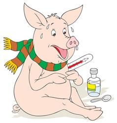 Swine flu vector