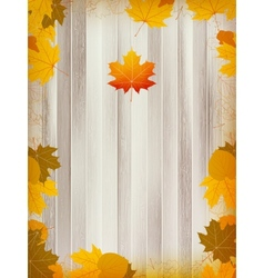 Autumn leaves on wooden background plus eps10 vector