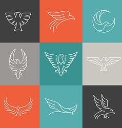 Eagle and falcon linear logos vector