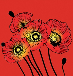 Postcard with red poppies on a red background vector