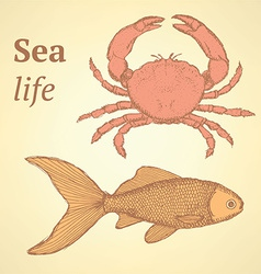 Sketch cute crab and fish in vintage style vector