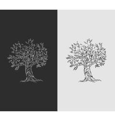 Olive tree on vintage paper vector