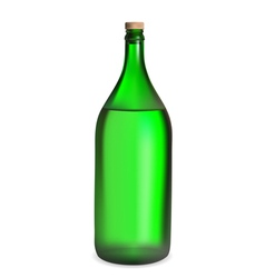 Green bottle vector