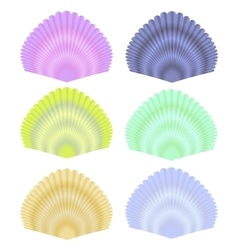 Seashell collection vector