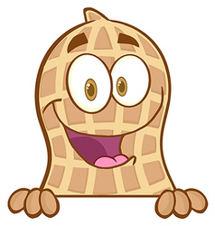 Peanut mascot character condom over a sign vector