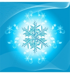 Winter snowflake and flourish vector