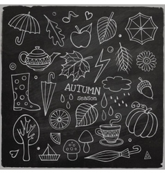 Set of different hand drawn autumn elements vector