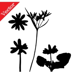 Set with wild flowers silhouettes isolated on vector