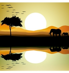 Safari of elephant silhouette vector