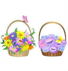 Flower baskets vector