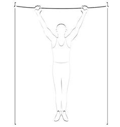 Exercise on the crossbar vector