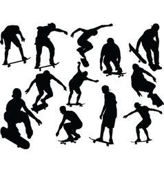 Skateboard collection - vector