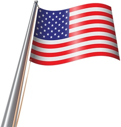 Us flag on pole vector