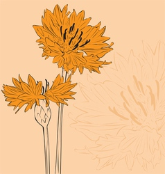 Minimalist floral background vector