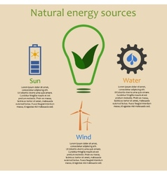 Infographics of natural energy vector