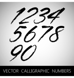 Set of calligraphic marker or ink numbers vector