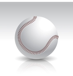Isolated baseball ball vector