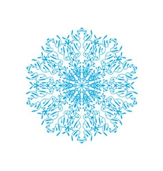 Ornate snowflake vector