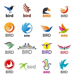 Big set of logos birds vector