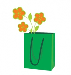 Package for purchases vector
