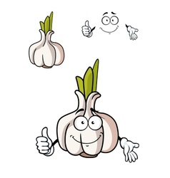 Cartoon whole fresh garlic bulb vector