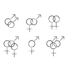 Sexual identity vector
