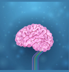 Brain and its functions vector