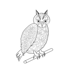 A monochrome sketch of an owl vector