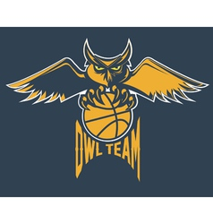 Sport basketball emblem owl team vector