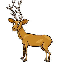Wapiti deer cartoon vector