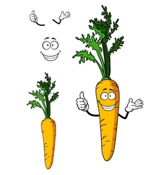 Fresh whole carrot vegetable vector
