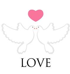Pair pigeon love vector