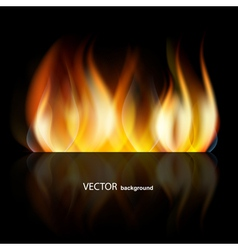 Abstract dark fire vector