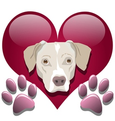 Love for dogs vector