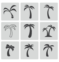 Black palm icons set vector