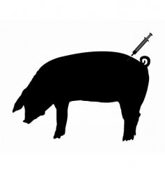 Swine gets an inoculation vector