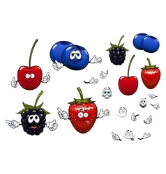 Strawberry blackberry cherry blueberry fruits vector