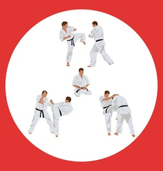 Set of images of karate vector